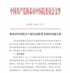 20170608-15号关于建设过硬党支部的实施方案